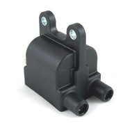 Dual Output Digital Ignition Coil